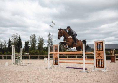 Ruskea hevonen hyppää esteen yli ratsastuskentällä