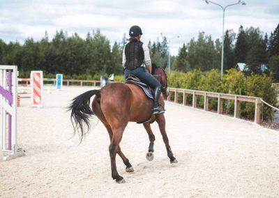 Ratsastusta ratsastuskentällä